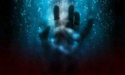 hand-2593743_960_720