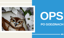 OPS PO GODZINACH #4(1)
