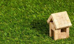 Środowiskowe domy samopomocy