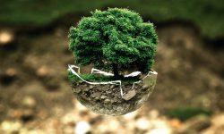 Odpady a środowisko