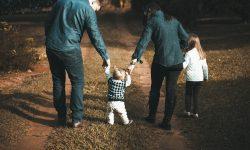 Zmiany w ustawie o wspieraniu rodziny i systemie pieczy zastępczej